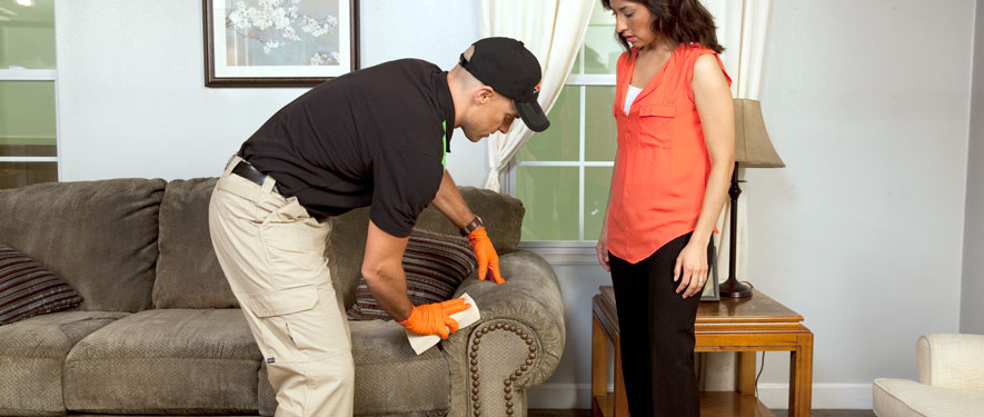 Gastonia, NC carpet upholstery cleaning
